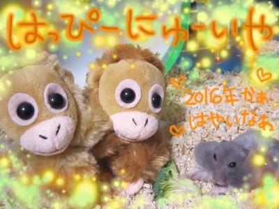 ハムスター迎春2016-2.JPG